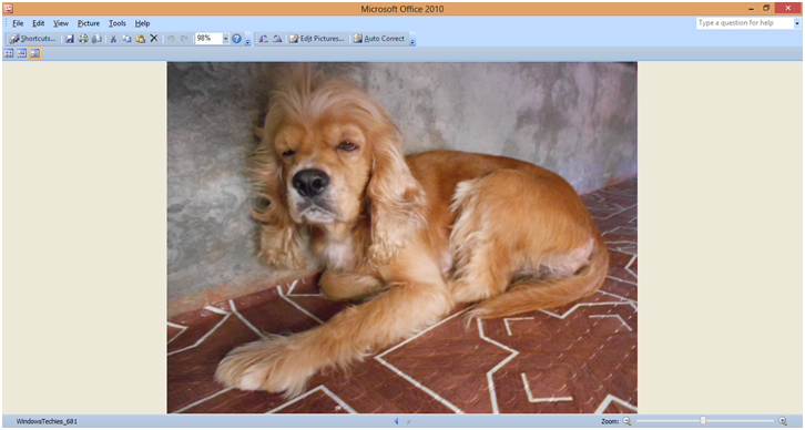 WindowsTechies_683